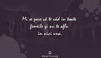 mihail-drumes-citat.jpg