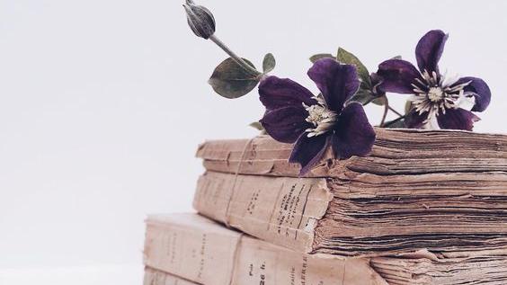 """Citind-o pe Anna Váry. Cartea """"Ultima vrăjitoare din Transilvania. Vol.III"""""""