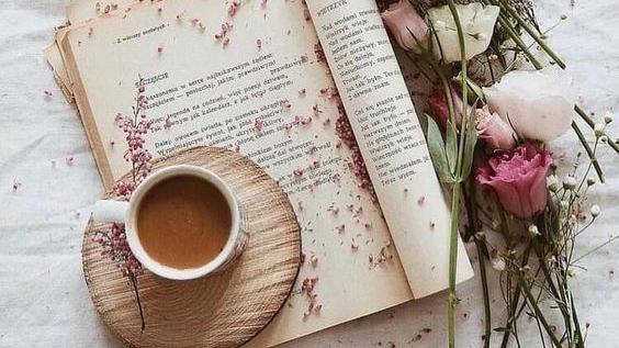 """Citind-o pe Corina Cîndea. Cartea """"Iubire și catifeaalbastră"""""""