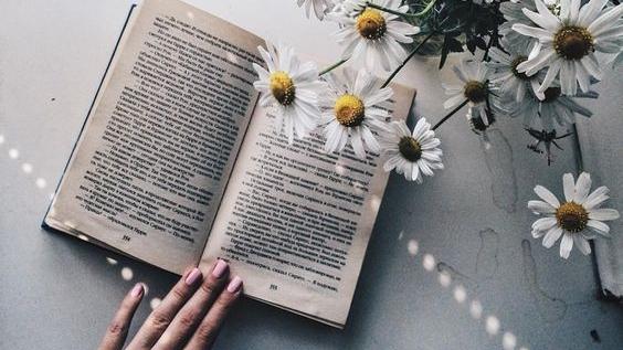 """Citind-o pe Corina Cîndea. Cartea """"Dragoste și mătasealbă"""""""
