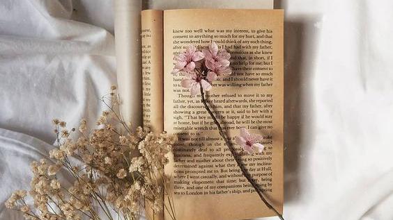 """Citind-o pe Anne K. Joy. Cartea """"Captivi întrecut"""""""